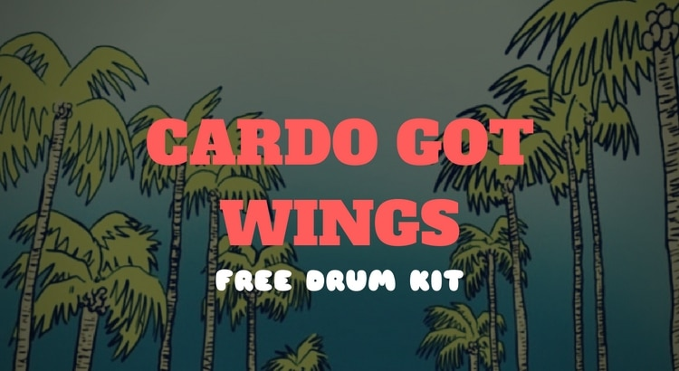 Download Cardo on the Beat Drum Kit