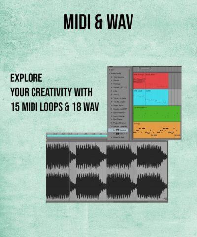 15 midi files and 18 midi patterns