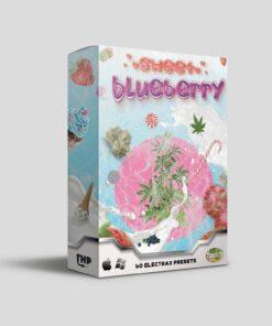 Sweet Blueberry - 60 Presets for Electra Plugin VST