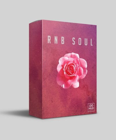 RNB Sample Pack by Godlike Loops