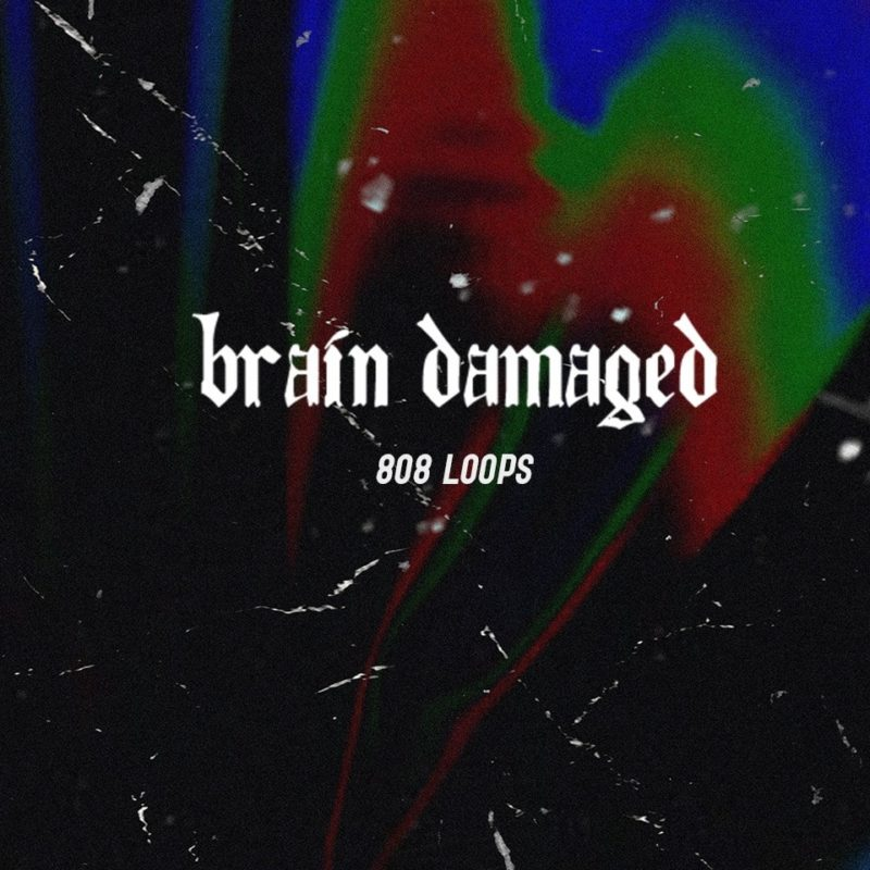 THP - Brain Damaged (808 Loops)