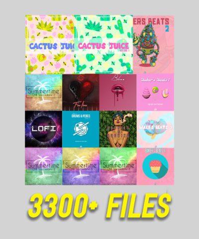 3300 Files in Trapfi bundle