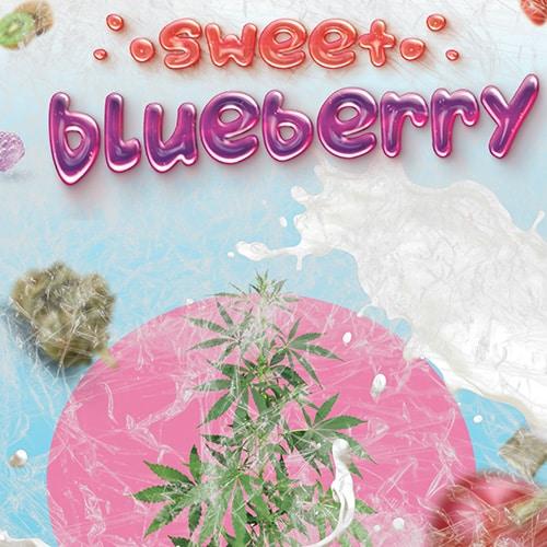 Sweet blueberry |
