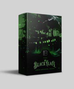 Brandon Chapa - Omnisphere Black Flag Bank
