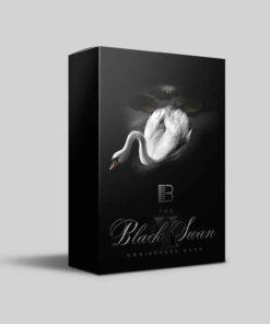 Brandon Chapa - Black Swan II Omnisphere Presets